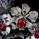 Broche Rubellite Orchidées Joaillières - Cartier Joaillerie.