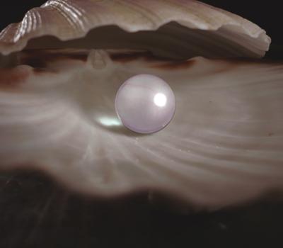 Atelier Perle à l'Académie du Luxe
