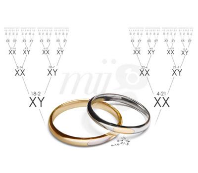 Alliances ADN by Carat & Moi