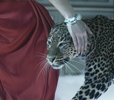 Panthère Précieuse - Film Odyssée de Cartier